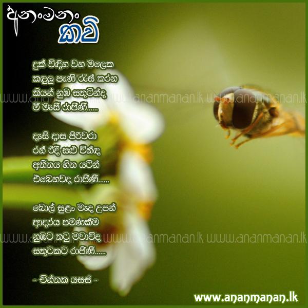 Sinhala Poem Duk Windina Wana Maleka by Chinthaka Yasas ~ Sinhala Kavi ...