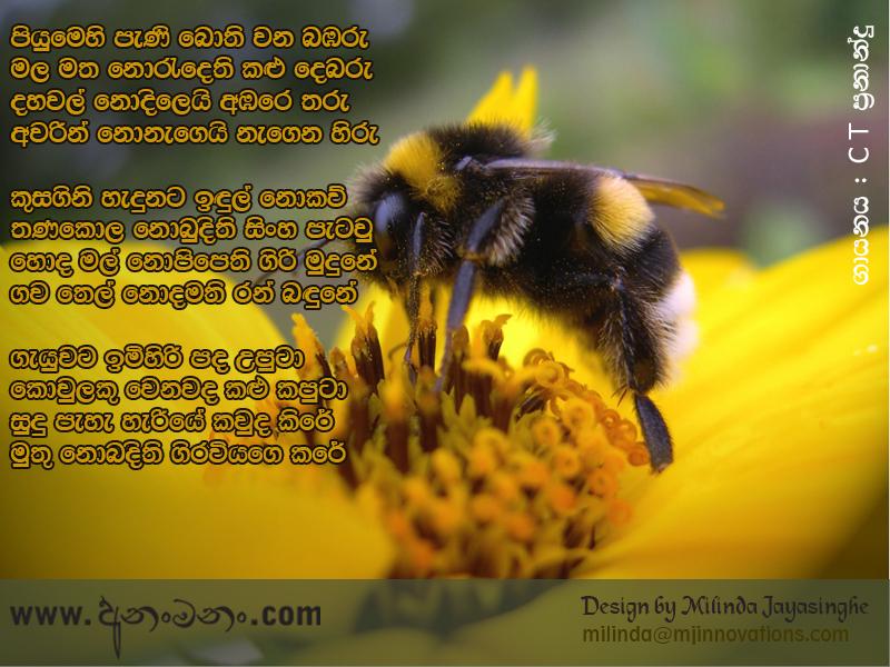 Piyumehi Pani Bothi Wana Babaru - C T Fernando Sinhala Song Lyrics ...